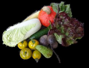 Bestel een groentepakket